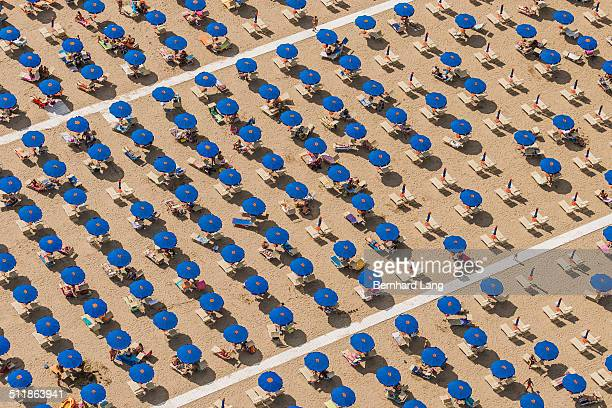 Aerial View of blue sunshades standing in rows