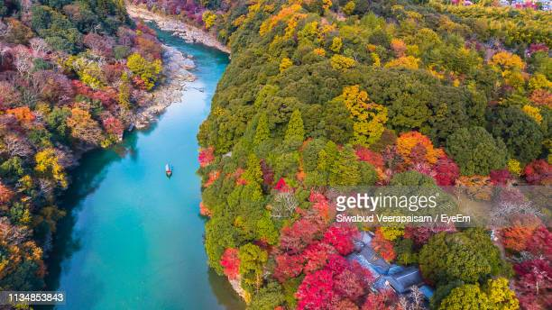 aerial view of boat on river against trees in forest during autumn - arashiyama stock pictures, royalty-free photos & images