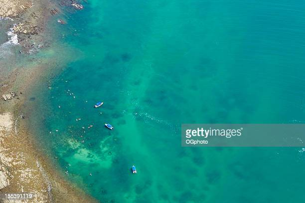 aerial view of boats and people snorkeling - ogphoto stock photos and pictures