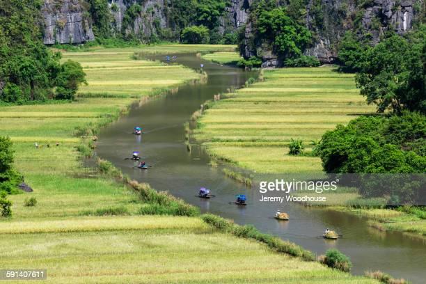 aerial view of boats floating on ngo dong river, ninh binh, ninh binh, vietnam - 数個の物 ストックフォトと画像