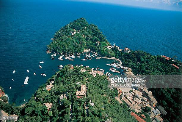 Aerial view of boats moored at a harbor Portofino Italian Riviera Liguria Italy