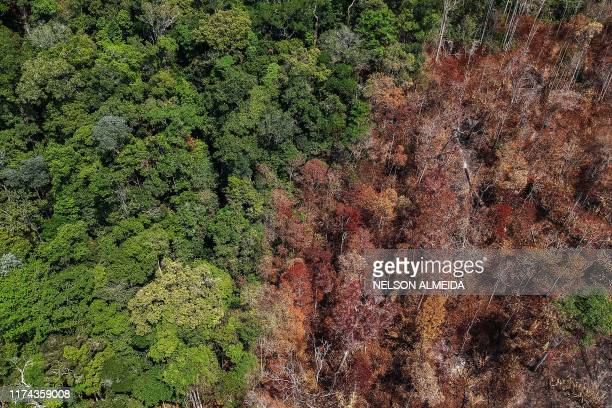 Aerial view of burnt areas near Moraes Almeida a town along a section of the transAmazonian highyway in Itaituba Para state Brazil on September 14...