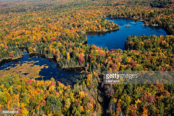 Aerial view of Canadian national park in autumn