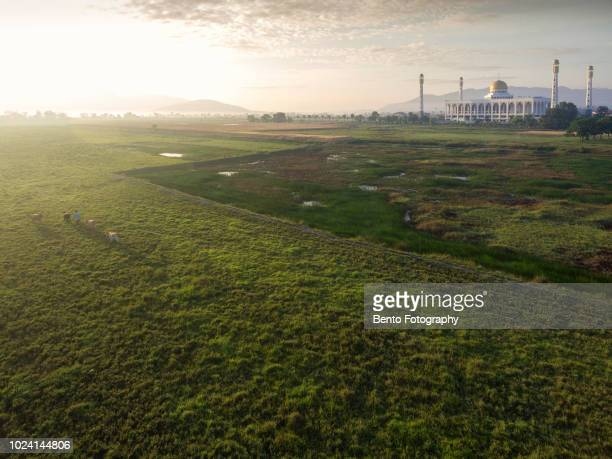 aerial view of central mosque in the morning - hat yai foto e immagini stock