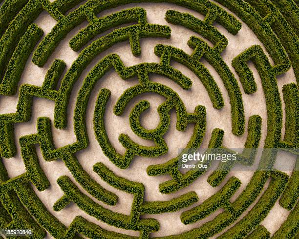 Aerial view of circular hedge maze