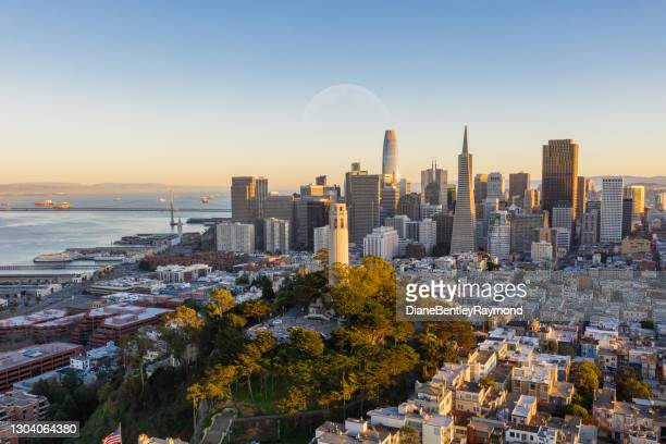 aerial view of coit tower and financial district - north beach san francisco stock pictures, royalty-free photos & images