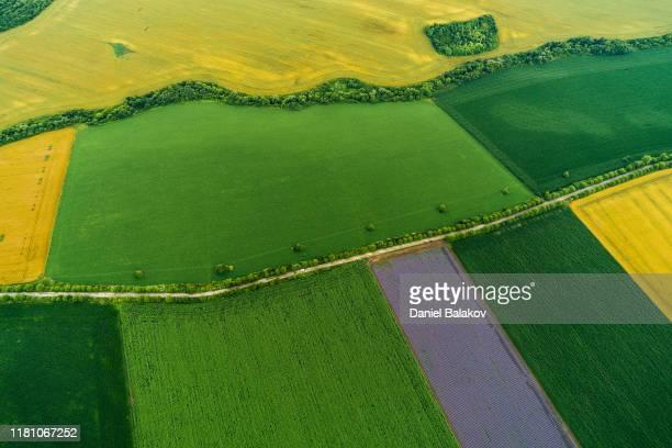 カラフルな農業フィールドの航空写真。耕地の夏。 - 持続可能な開発目標 ストックフォトと画像