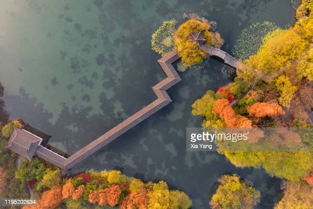 aerial view of colorful autumn landscape of west lake - hangzhou, china - paviljoen stockfoto's en -beelden