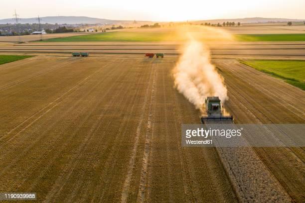 aerial view of combine harvester on agricultural field against sky during sunset - ausgedörrt stock-fotos und bilder