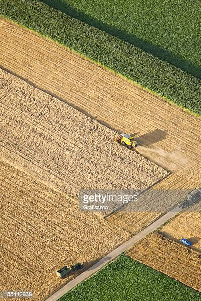 Aerial view of combine harvester working on wheat field