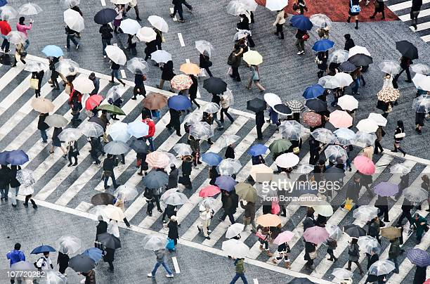 Aerial view of commuters on Shibuya Crossing