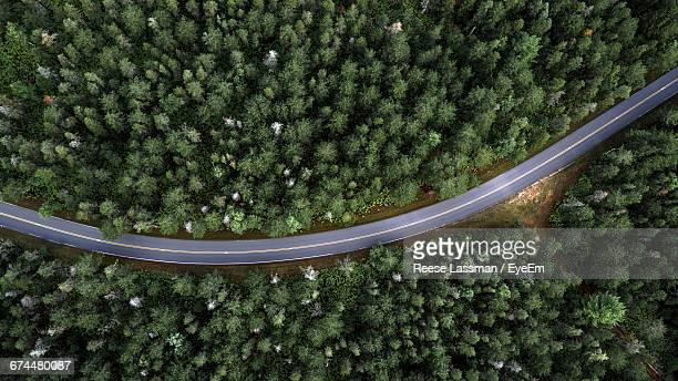 aerial view of country road through forest - forêt photos et images de collection