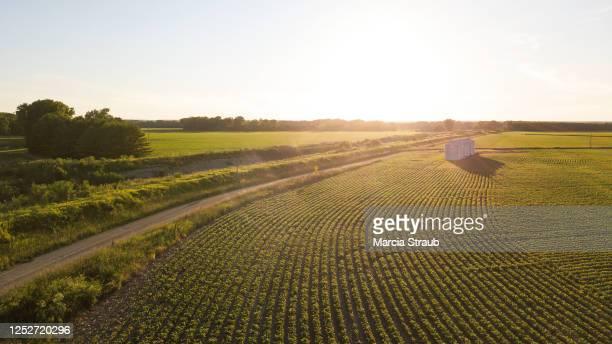 aerial view of country silo or grain bin at sunset - región central de eeuu fotografías e imágenes de stock