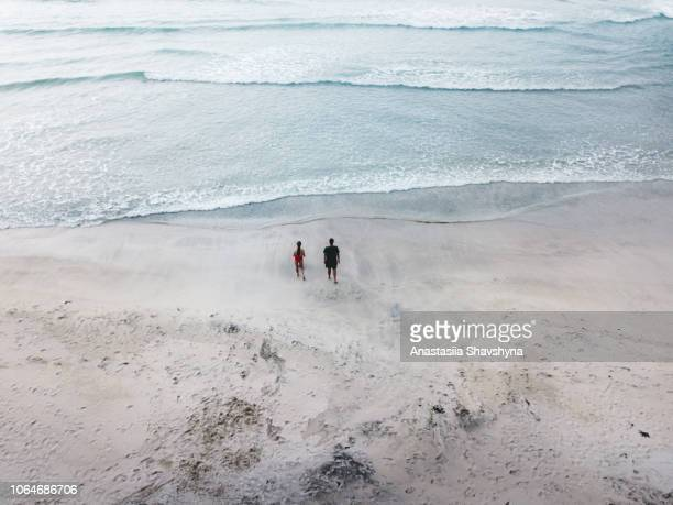 aerial view of couple with dog walking at kvalvika beach on lofoten islands in norway - north stock pictures, royalty-free photos & images