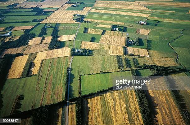 Aerial view of cultivated fields Skagen peninsula North Jutland Denmark