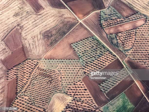 aerial view of cultivated land - bortes stock-fotos und bilder
