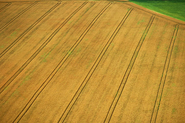 Aerial view of cultivated land with beautiful diagonal lines