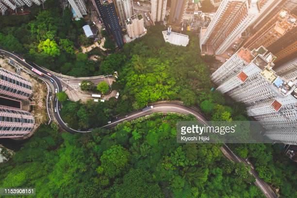 aerial view of curve road in forest against buildings in hong kong - luchtfoto stockfoto's en -beelden