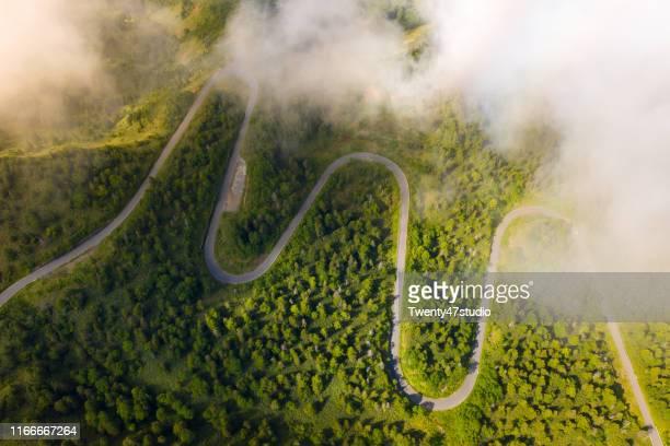 aerial view of curve road through green forest on mountain in summer - landelement stockfoto's en -beelden