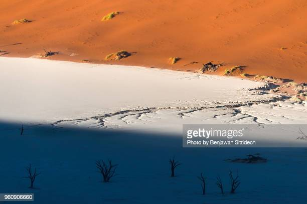 aerial view of dead trees on salt clay pan at deadvlei, sossusvlei in namib-naukluft park, namibia, africa - dead vlei namibia stock pictures, royalty-free photos & images