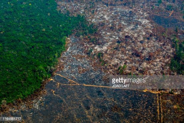TOPSHOT Aerial view of deforestation in Nascentes da Serra do Cachimbo Biological Reserve in Altamira Para state Brazil in the Amazon basin on August...