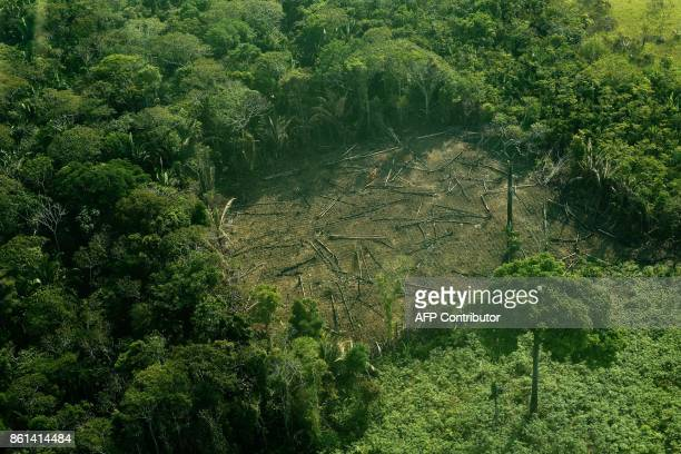Aerial view of deforestation in the Western Amazon region of Brazil on September 15 2017 Parts of the Western Amazon rainforest have suffered some of...