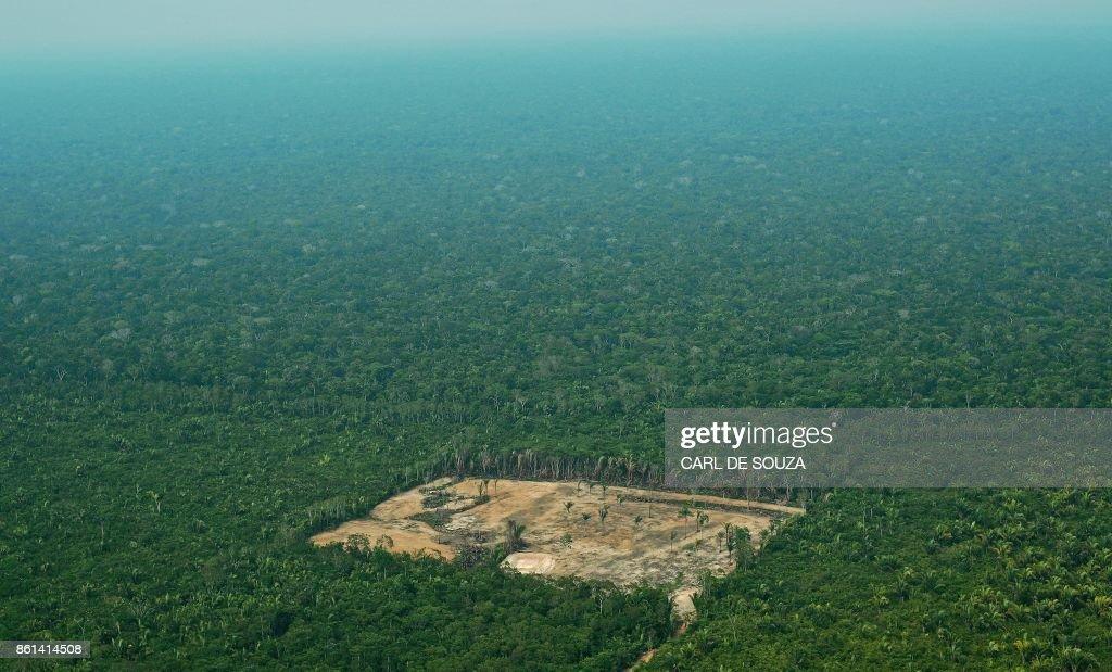 BRAZIL-AMAZON-DEFORESTATION : News Photo