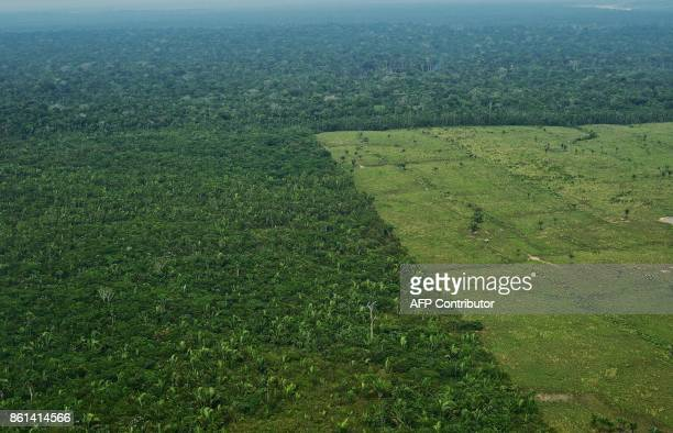 Aerial view of deforestation in the Western Amazon region of Brazil on September 22, 2017. Parts of the Western Amazon rainforest have suffered some...