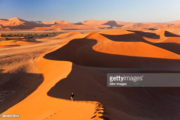 aerial view of desert landscape, distant view of person walking along ridge of sand dune. - ナミブ砂漠 ストックフォトと画像