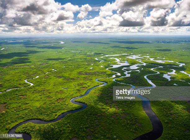 aerial view of everglades national park in florida, usa - las américas fotografías e imágenes de stock