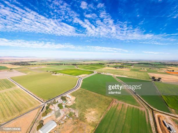 aerial view of farmland in california - pianura foto e immagini stock