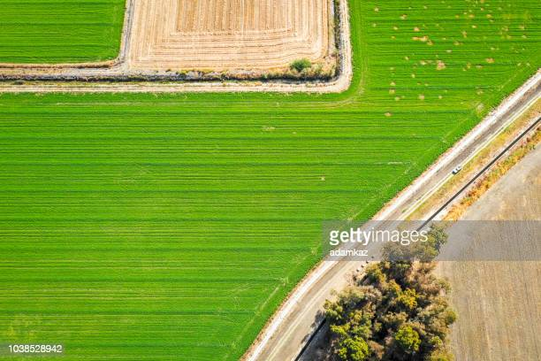 aerial view of farmland in california - san joaquin valley stock pictures, royalty-free photos & images