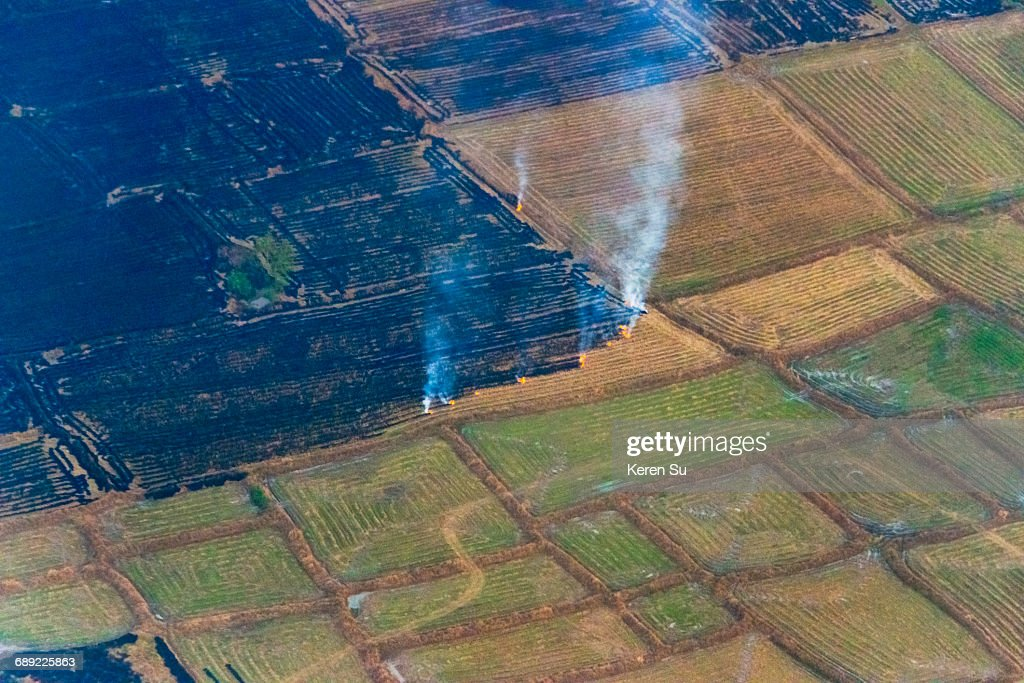 Aerial view of farmland : Stock Photo