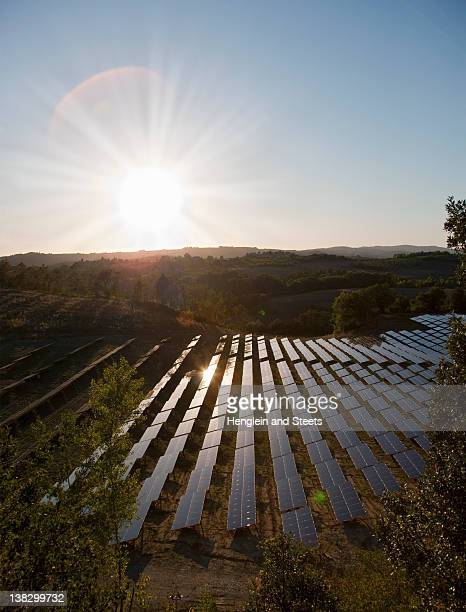 Aerial view of field of solar panels