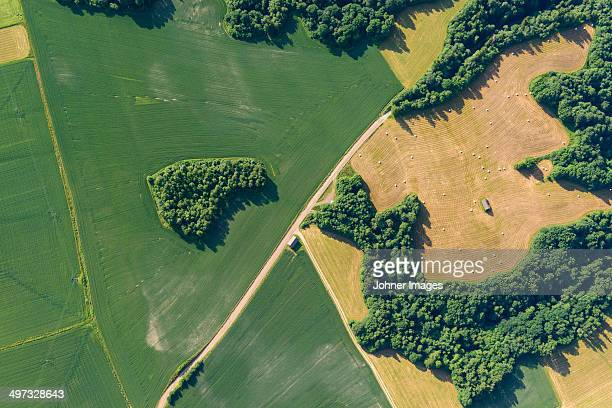 Aerial view of fields, Dalarna, Sweden