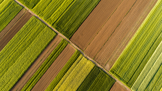 Aerial view of fields 1028184772
