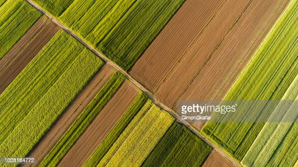 aerial view of fields - campo foto e immagini stock