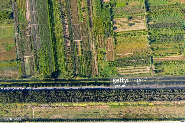 aerial view of fields - liyao xie stock-fotos und bilder