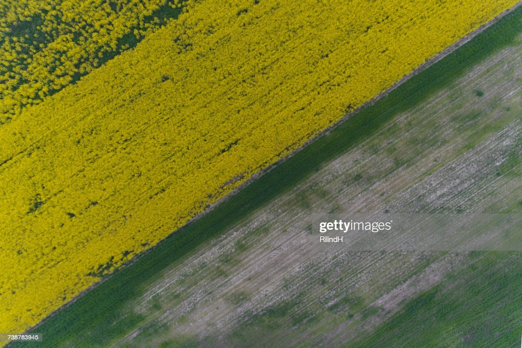 Aerial view of fields, Skopje, Macedonia : ストックフォト