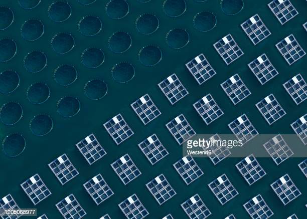 aerial view of fish and lobster farm - aquaculture stock pictures, royalty-free photos & images
