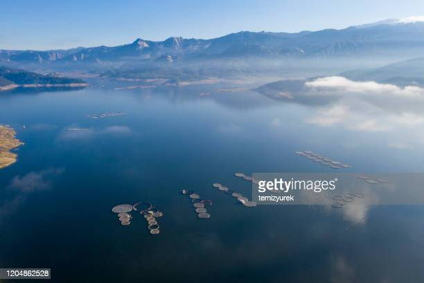 aerial view of fish farm - fatty acid stock pictures, royalty-free photos & images