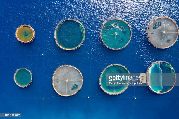 aerial view of fishing industry - aquaculture stock pictures, royalty-free photos & images