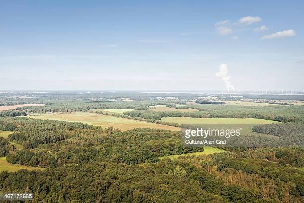 aerial view of forest, welzow, brandenburg, germany - land brandenburg stock-fotos und bilder