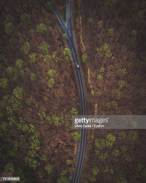 Aerial View Of Forked Road Through Forest