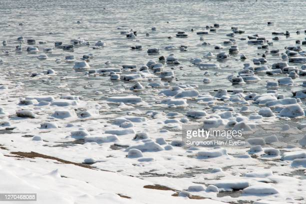 aerial view of frozen beach - gwangju stock pictures, royalty-free photos & images