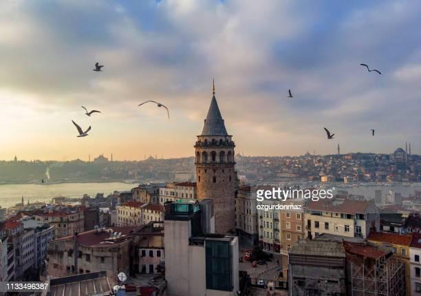 vista aérea de la torre de gálata en estambul, turquía - estambul fotografías e imágenes de stock