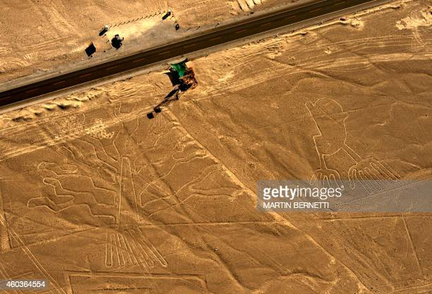 Aerial view of geoglyphs representating a guarango tree and hands at Nazca Lines some 435 km south of Lima Peru on December 11 2014 Geoglyphs can be...