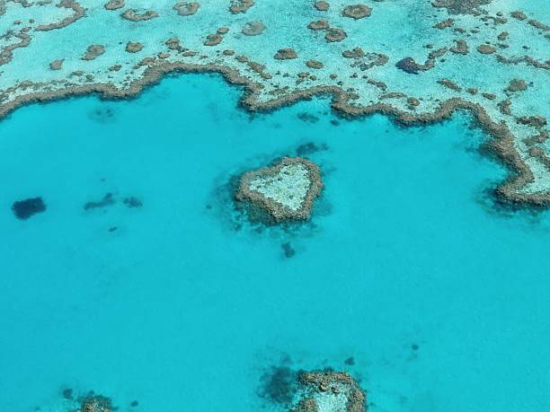 Aerial View Of Great Barrier Reef