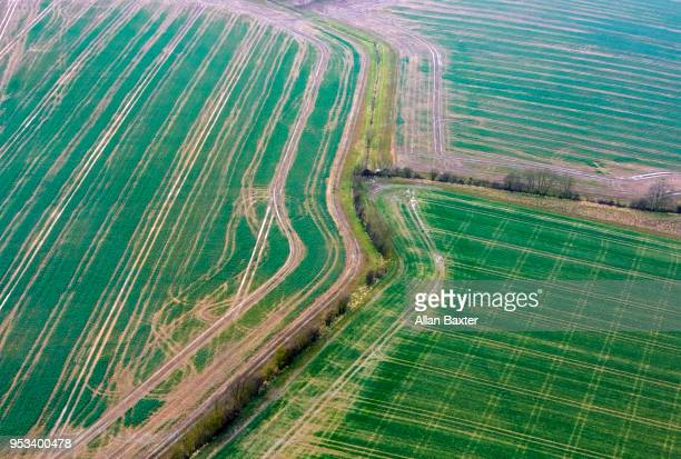 Aerial view of green fields and hedgerows in Cambridgeshire