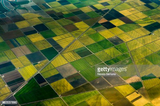 aerial view of green fields - quadratisch komposition stock-fotos und bilder